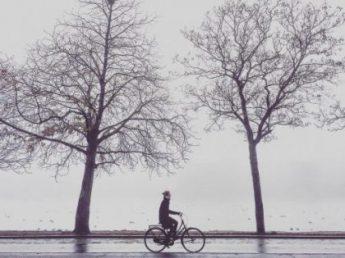 Copenhagen mornings