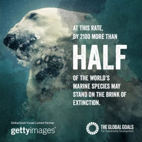 Photo 'Queen of the Deep Blue Sea' featured in UN's Global Goals campaign, 2016